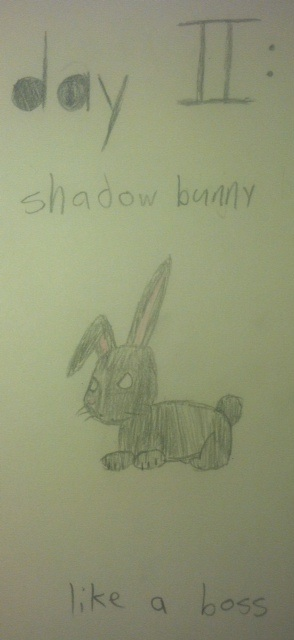 Day 2: Shadow Bunny